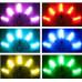 LED веера Zoltan